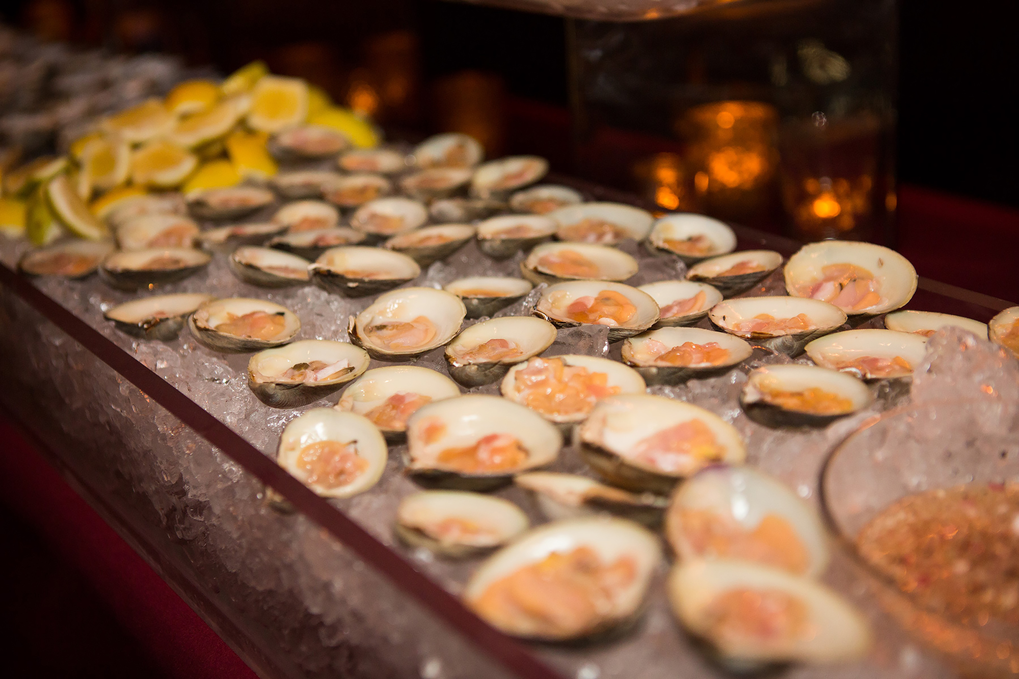 Oysters at raw bar station